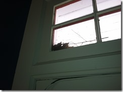 Birdies indoor2